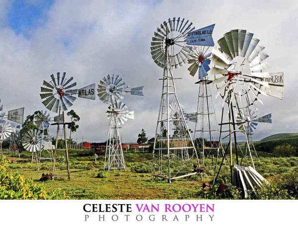 8333 windmill